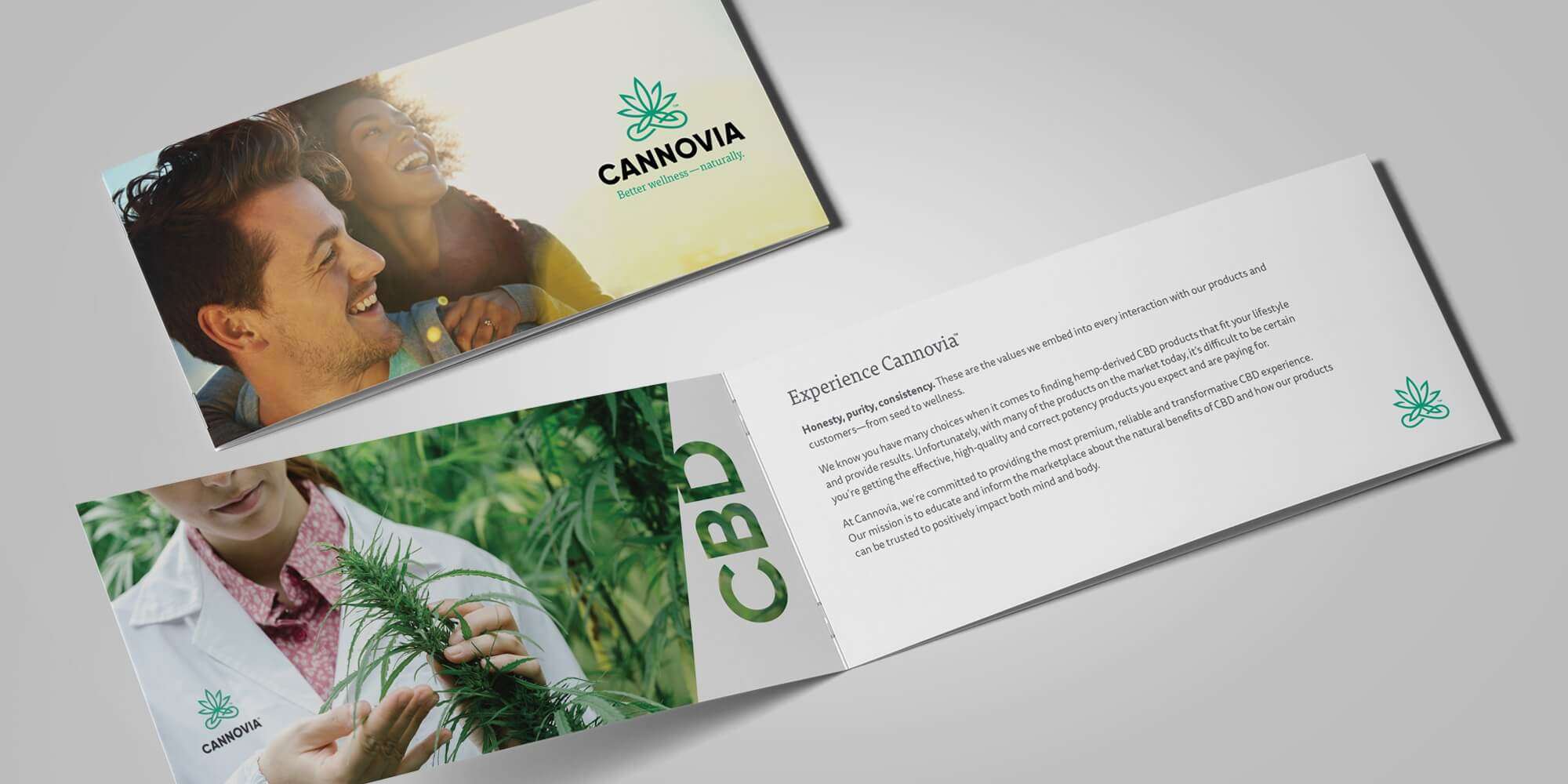 Cannovia brochure cover and inside