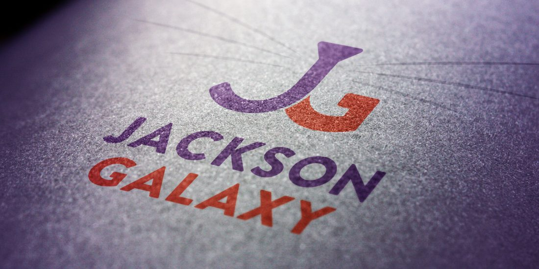 branding and design Jackson Galaxy logo